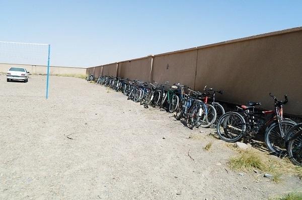 دوچرخه های بچه های هامون
